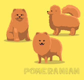 Dog Pomeranian Cartoon Vector Illustration Royalty Free Stock Images