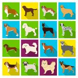 Dog, pooch, breed, and other web icon in flat style.Dalmatian, shepherd, terrier, icons in set collection. Dog, pooch, breed, and other  icon in flat style Stock Image
