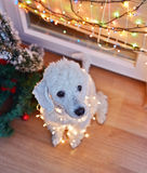 Dog posing with Christmas lights Royalty Free Stock Images