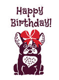 Dog present greeting card happy birthday Royalty Free Stock Photos