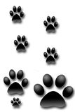 Dog prints Stock Photography