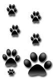 Dog prints Stock Photography