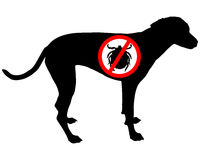 Dog prohibition sign for ticks Royalty Free Stock Image