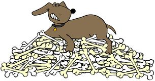 Dog protecting a pile of bones