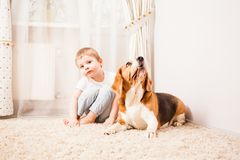 The dog protects the owner. Role games in the room Royalty Free Stock Photo