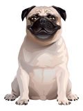 Smile Dog. Pug Royalty Free Stock Photos