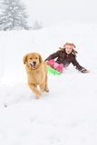 Dog pulling child on snow sled Royalty Free Stock Image