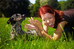 Dog pulling hair of a woman Royalty Free Stock Images