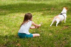 Dog Pulling At Leash. Young girl holding tightly while her dogs pulls on the leash Royalty Free Stock Photos