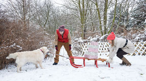 Dog pulling sled with christmas gifts Royalty Free Stock Images