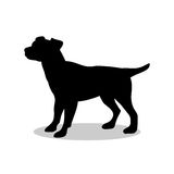 Dog pup pet black silhouette animal. Vector Illustrator Royalty Free Stock Image