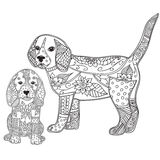 Dog and puppy adult antistress or children coloring page. Stock Image