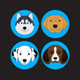 Dog and Puppy Set Siberian Husky Vector and Icon Stock Photo