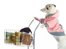 Dog pushing a shopping cart full of food Royalty Free Stock Photo