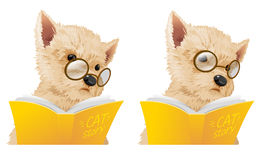 Dog read. A book education mascot Stock Images
