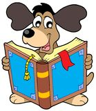 Dog reading book Stock Images
