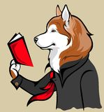 Dog reading a book Royalty Free Stock Image