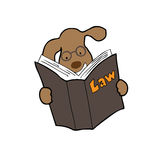 Dog reads law book. Dog reading law book cartoon Stock Photo