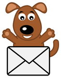 Dog received a letter Stock Image