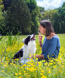Dog reprimand Stock Photos