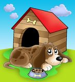 Dog resting in front of kennel. Color illustration Stock Photography