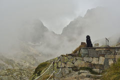 Dog resting near a mountain shelter. Black beautiful dog resting near a mountain shelter. Mont Blanc. France alps Royalty Free Stock Photo