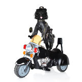 Dog riding on a motorcycle. Poodle in leather jacket riding on a black motorcycle Stock Image
