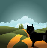 Dog on the road to the Emerald City. Royalty Free Stock Image
