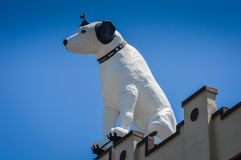 Dog on a Roof Royalty Free Stock Photography