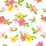 Dog-rose blooms. wild rose vector seamless pattern. Dog-rose blooms. pink wild rose vector seamless pattern Royalty Free Stock Photo