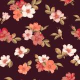 Dog-rose blooms. wild rose vector seamless pattern. Dog-rose blooms. pink wild rose vector seamless pattern Stock Image
