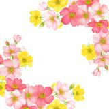 Dog-rose blooms. wild rose vector illustration. Dog-rose blooms. pink and yellow wild rose vector illustration Royalty Free Stock Images