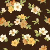 Dog-rose blooms. wild rose vector seamless pattern. Dog-rose blooms. pink wild rose vector seamless pattern Royalty Free Stock Image