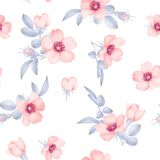 Dog-rose blooms. wild rose vector seamless pattern. Dog-rose blooms. pink wild rose vector seamless pattern Stock Photography