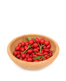 Dog rose hip. The rose hip and rose haw, is the pomaceous fruit of the rose plant, that typically is red-to-orange, but might be dark purple-to-black in some royalty free stock photos