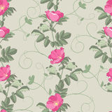 Dog-roses seamless background Stock Photography