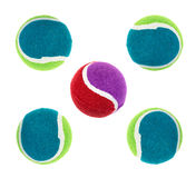 Dog rubber chew balls. Five colorful rubber chew balls for dogs on a white background Stock Photography