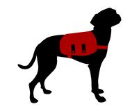 Dog with rucksack Royalty Free Stock Photos
