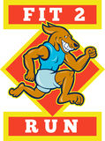Dog Running Jogging Fit Run Stock Images
