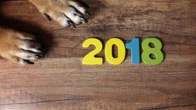 Dog& x27; s爪子和第2018年在木背景 库存照片