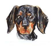 Dog& x27; s возглавляет, воплощение, картина Стоковое Фото
