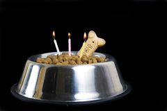 Dog's birthday cake Royalty Free Stock Image