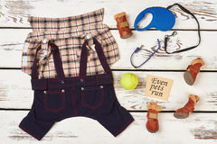 Dog`s boots, shirt and ball. Sport with best friend stock photos