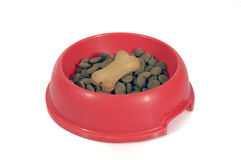 Dog's bowl Royalty Free Stock Photo