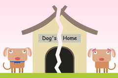 Free Dog's Broken Home Stock Images - 37442094