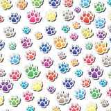 Dog's foot prints Stock Images
