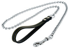 Dog's lead on white Royalty Free Stock Image