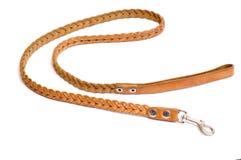 Dog's leash Stock Photo