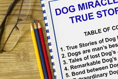 Dog;s miracle. Dog miracle and dog true story lecture concept stock photos