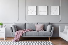 Dog`s posters above comfortable grey couch in stylish living room interior with two sofas. Real photo royalty free stock photography